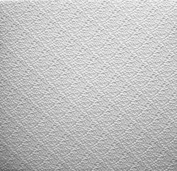 Плитка потолочная С2018 белая (50х50)
