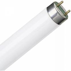 Лампа ЛД-20 (30)