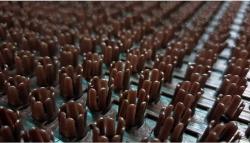 Ковровое покрытие щетинистое на основе Тем. шоколад ширина -0,9м (25)